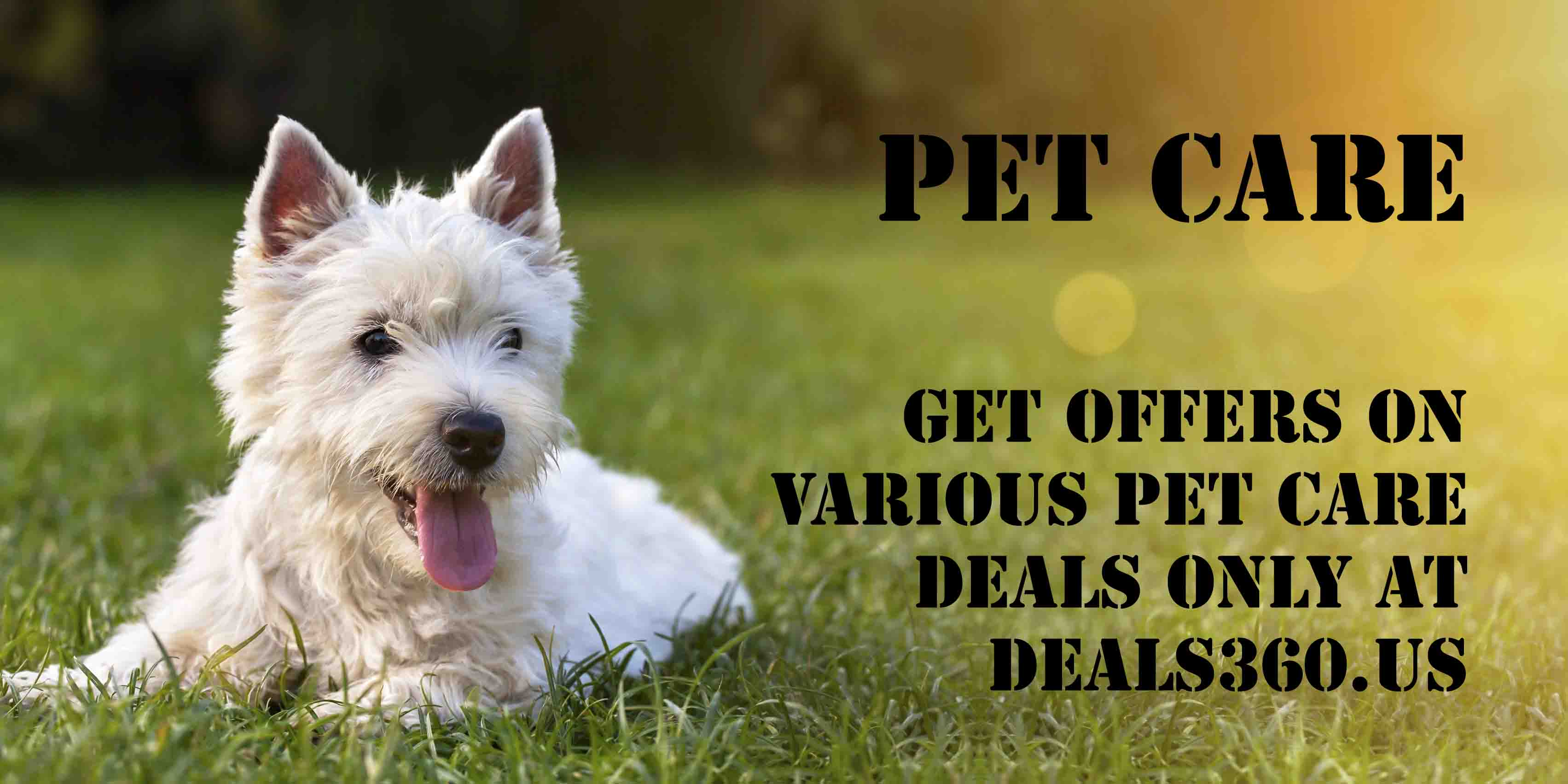 Discount Offers for your Pets