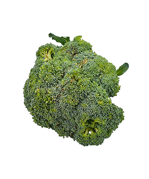 Broccoli Organic (1 Each) Deals